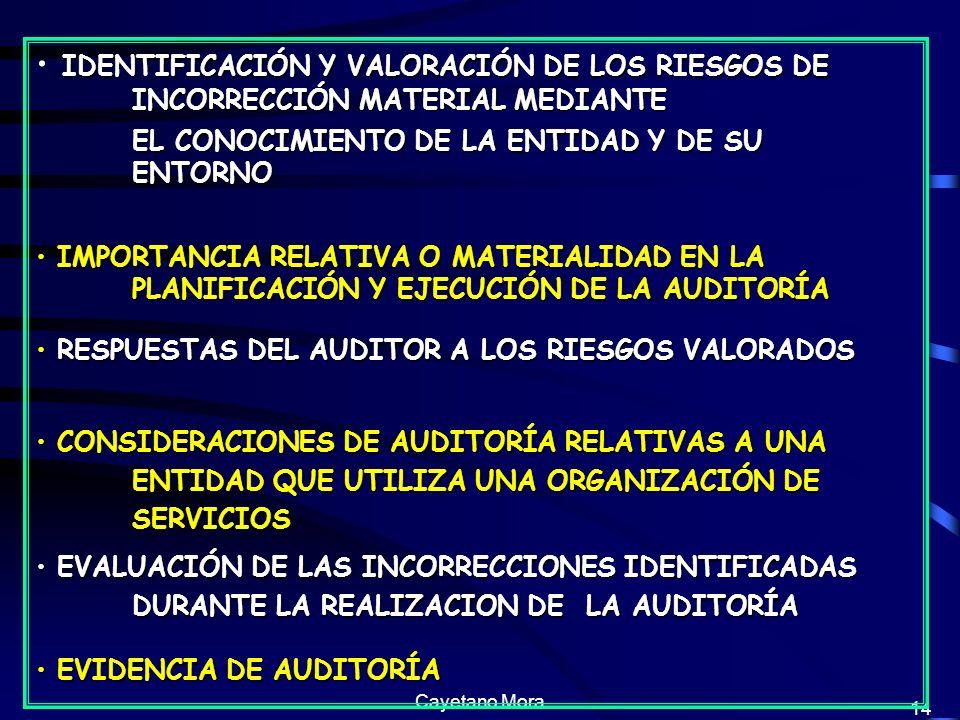 Cayetano Mora 14 IDENTIFICACIÓN Y VALORACIÓN DE LOS RIESGOS DE INCORRECCIÓN MATERIAL MEDIANTE EL CONOCIMIENTO DE LA ENTIDAD Y DE SU ENTORNO IMPORTANCIA RELATIVA O MATERIALIDAD EN LA PLANIFICACIÓN Y EJECUCIÓN DE LA AUDITORÍA IMPORTANCIA RELATIVA O MATERIALIDAD EN LA PLANIFICACIÓN Y EJECUCIÓN DE LA AUDITORÍA RESPUESTAS DEL AUDITOR A LOS RIESGOS VALORADOS RESPUESTAS DEL AUDITOR A LOS RIESGOS VALORADOS CONSIDERACIONES DE AUDITORÍA RELATIVAS A UNA ENTIDAD QUE UTILIZA UNA ORGANIZACIÓN DE SERVICIOS CONSIDERACIONES DE AUDITORÍA RELATIVAS A UNA ENTIDAD QUE UTILIZA UNA ORGANIZACIÓN DE SERVICIOS EVALUACIÓN DE LAS INCORRECCIONES IDENTIFICADAS DURANTE LA REALIZACION DE LA AUDITORÍA EVALUACIÓN DE LAS INCORRECCIONES IDENTIFICADAS DURANTE LA REALIZACION DE LA AUDITORÍA EVIDENCIA DE AUDITORÍA EVIDENCIA DE AUDITORÍA