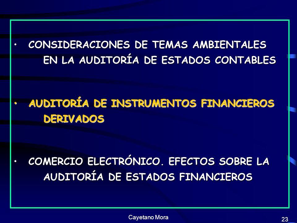 Cayetano Mora 23 CONSIDERACIONES DE TEMAS AMBIENTALES EN LA AUDITORÍA DE ESTADOS CONTABLESCONSIDERACIONES DE TEMAS AMBIENTALES EN LA AUDITORÍA DE ESTADOS CONTABLES AUDITORÍA DE INSTRUMENTOS FINANCIEROS DERIVADOSAUDITORÍA DE INSTRUMENTOS FINANCIEROS DERIVADOS COMERCIO ELECTRÓNICO.
