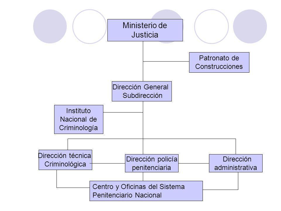 Dirección General Subdirección Dirección técnica Criminológica Dirección policía penitenciaria Dirección administrativa Ministerio de Justicia Institu