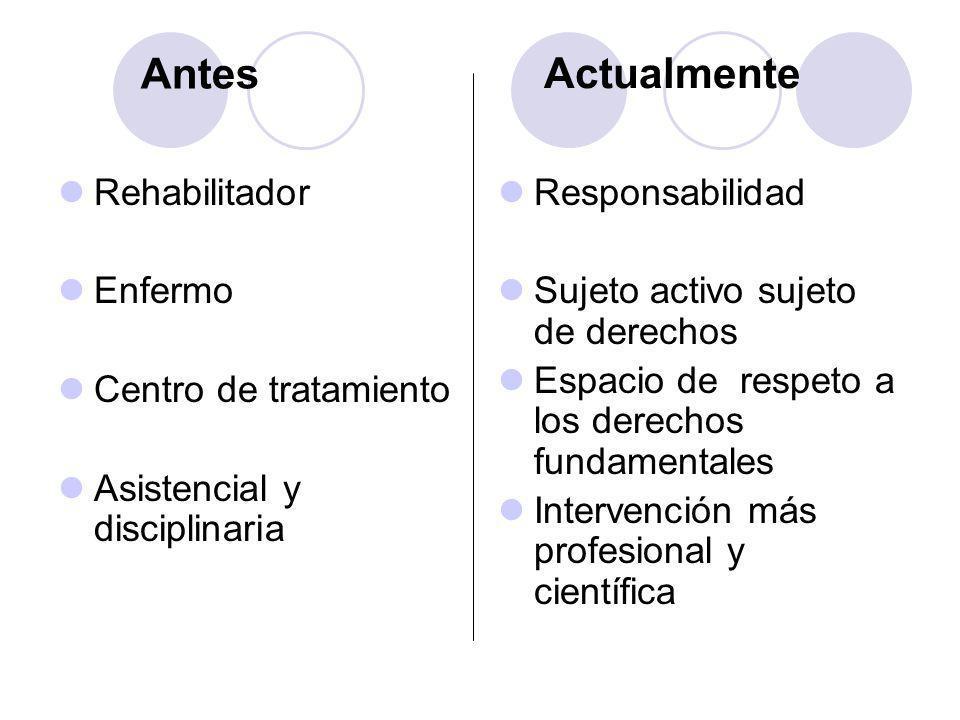 Rehabilitador Enfermo Centro de tratamiento Asistencial y disciplinaria Responsabilidad Sujeto activo sujeto de derechos Espacio de respeto a los dere