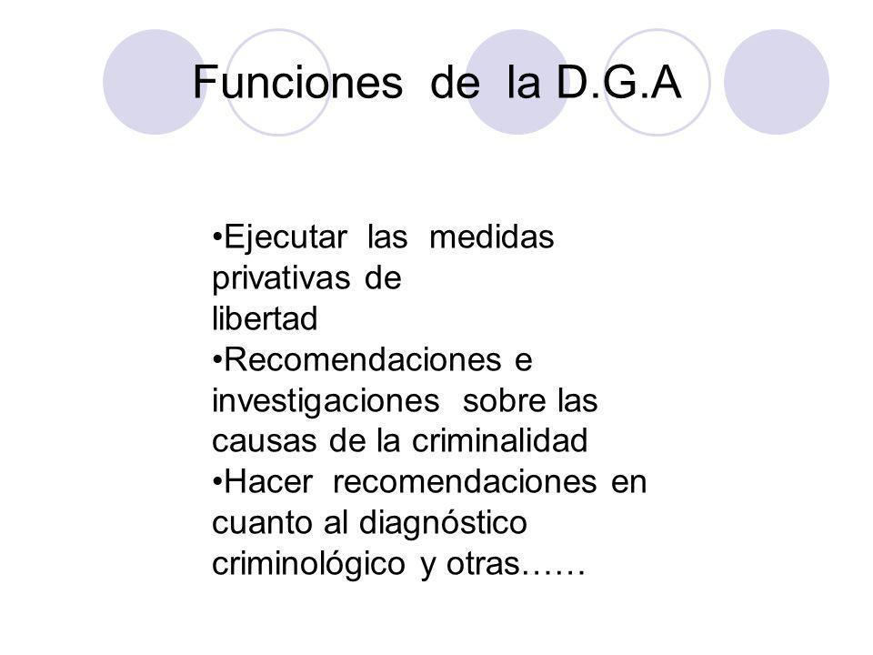 Funciones de la D.G.A Ejecutar las medidas privativas de libertad Recomendaciones e investigaciones sobre las causas de la criminalidad Hacer recomend