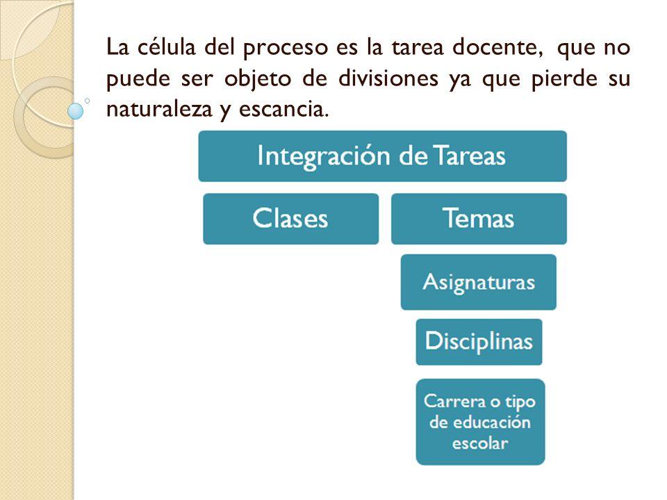La célula del proceso es la tarea docente, que no puede ser objeto de divisiones ya que pierde su naturaleza y escancia.