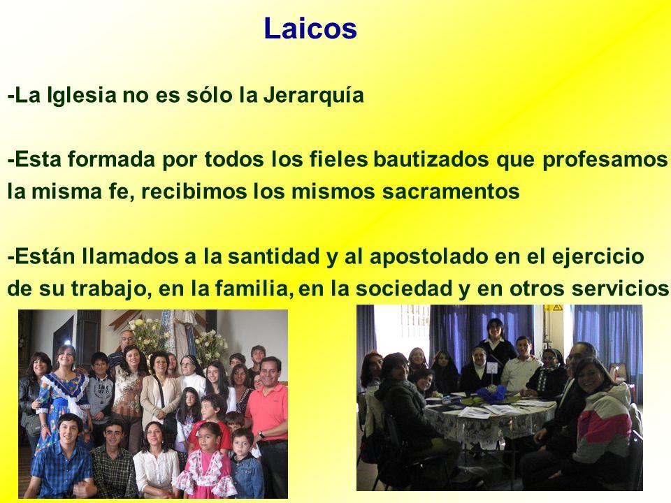 Laicos -La Iglesia no es sólo la Jerarquía -Esta formada por todos los fieles bautizados que profesamos la misma fe, recibimos los mismos sacramentos