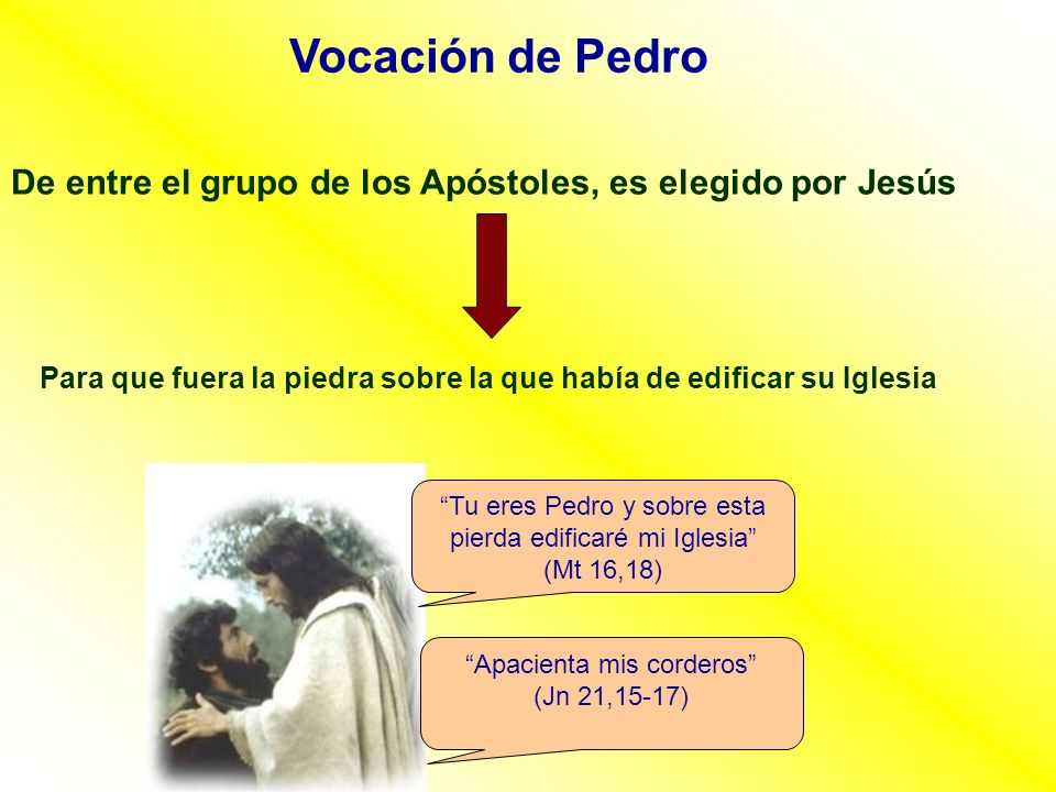 Vocación de Pedro De entre el grupo de los Apóstoles, es elegido por Jesús Para que fuera la piedra sobre la que había de edificar su Iglesia Tu eres