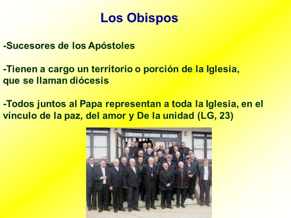 Los Obispos -Sucesores de los Apóstoles -Tienen a cargo un territorio o porción de la Iglesia, que se llaman diócesis -Todos juntos al Papa representa