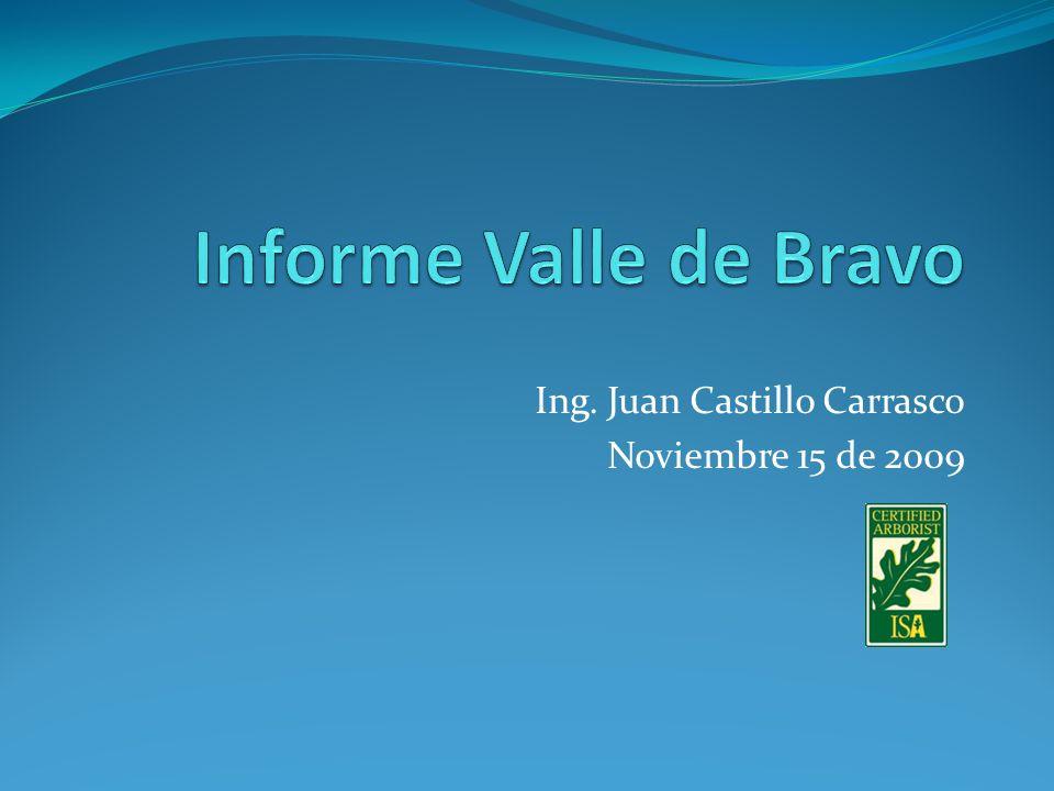 Ing. Juan Castillo Carrasco Noviembre 15 de 2009