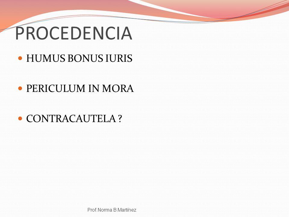 PROCEDENCIA HUMUS BONUS IURIS PERICULUM IN MORA CONTRACAUTELA ? Prof.Norma B.Martínez