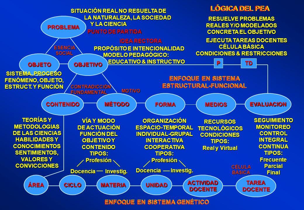 LÓGICA DEL PEA ENFOQUE EN SISTEMA ESTRUCTURAL-FUNCIONAL ENFOQUE EN SISTEMA ESTRUCTURAL-FUNCIONAL ENFOQUE EN SISTEMA GENÉTICO VÍA Y MODO DE ACTUACIÓN F