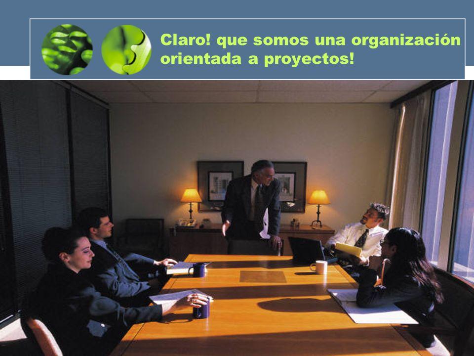 Claro! que somos una organización orientada a proyectos!
