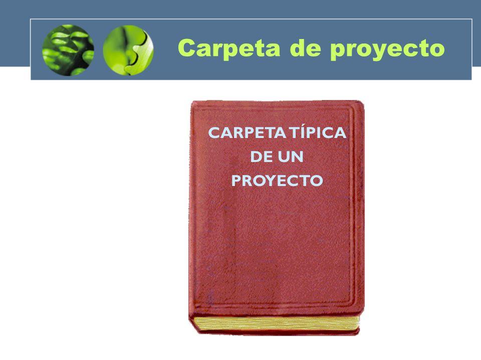 CARPETA TÍPICA DE UN PROYECTO Carpeta de proyecto