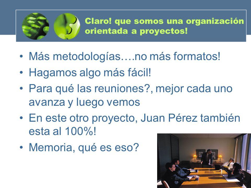 Gerencia de Proyectos Un enfoque prágmatico Hernando Castro Ramírez Marzo 2005