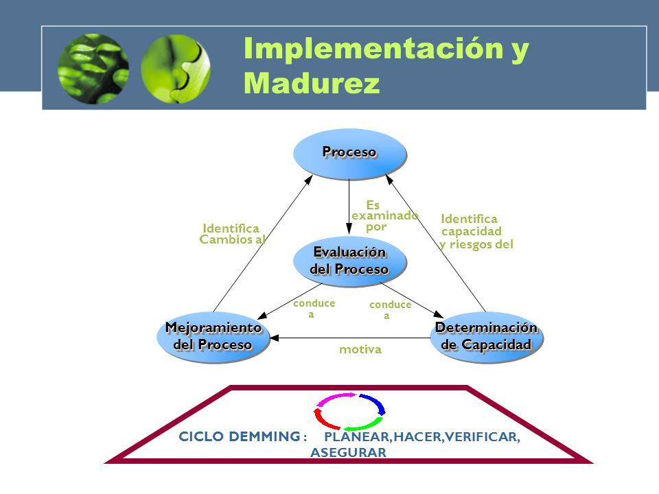 ESFUERZOS Y OBJETIVOS GRADUALES HACIA LA MADURACIÓN madurez Baja Madurez Alta Madurez Implementación y Madurez