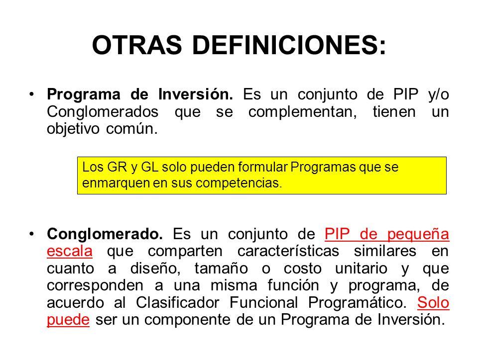 OTRAS DEFINICIONES: Programa de Inversión.