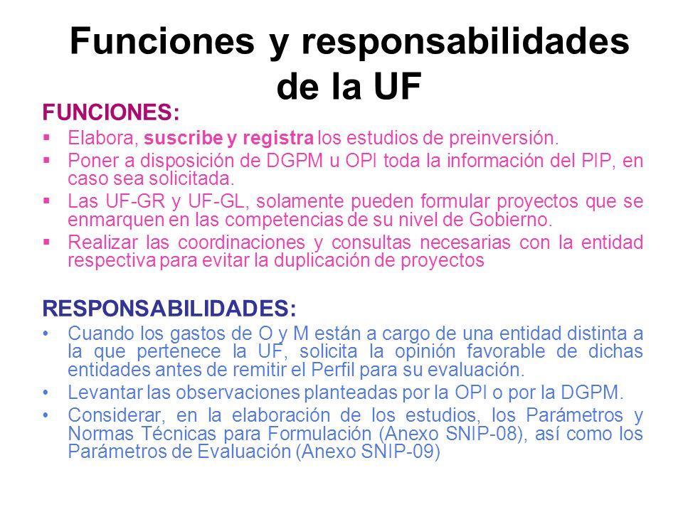 FUNCIONES: Elabora, suscribe y registra los estudios de preinversión.
