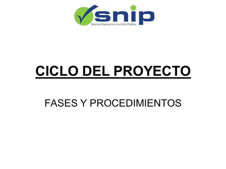 CICLO DEL PROYECTO FASES Y PROCEDIMIENTOS
