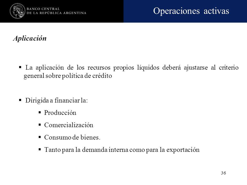 Operaciones activas 35 Recursos propios líquidos El exceso de RPC respecto de los activos inmovilizados y otros conceptos De acuerdo con las normas so
