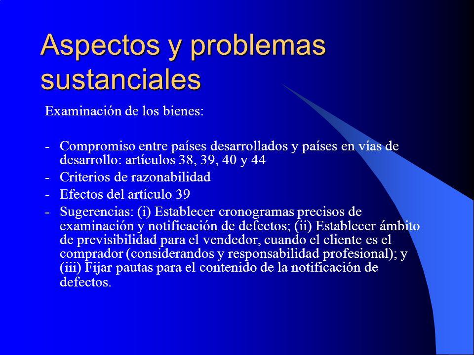 Aspectos y problemas sustanciales Examinación de los bienes: -Compromiso entre países desarrollados y países en vías de desarrollo: artículos 38, 39, 40 y 44 -Criterios de razonabilidad -Efectos del artículo 39 -Sugerencias: (i) Establecer cronogramas precisos de examinación y notificación de defectos; (ii) Establecer ámbito de previsibilidad para el vendedor, cuando el cliente es el comprador (considerandos y responsabilidad profesional); y (iii) Fijar pautas para el contenido de la notificación de defectos.
