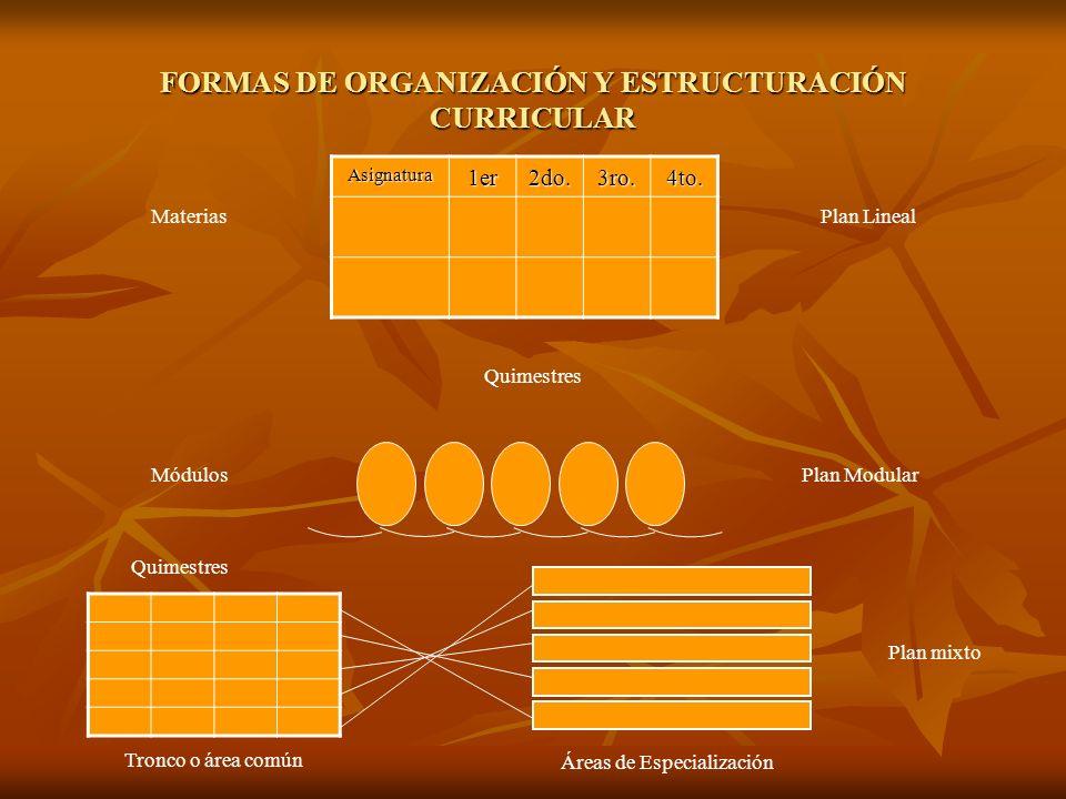 FORMAS DE ORGANIZACIÓN Y ESTRUCTURACIÓN CURRICULAR Asignatura1er2do.3ro.4to.
