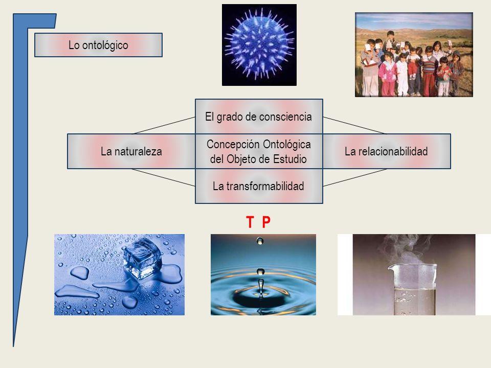 Lo ontológico Concepción Ontológica del Objeto de Estudio La naturalezaLa relacionabilidad La transformabilidad El grado de consciencia T P