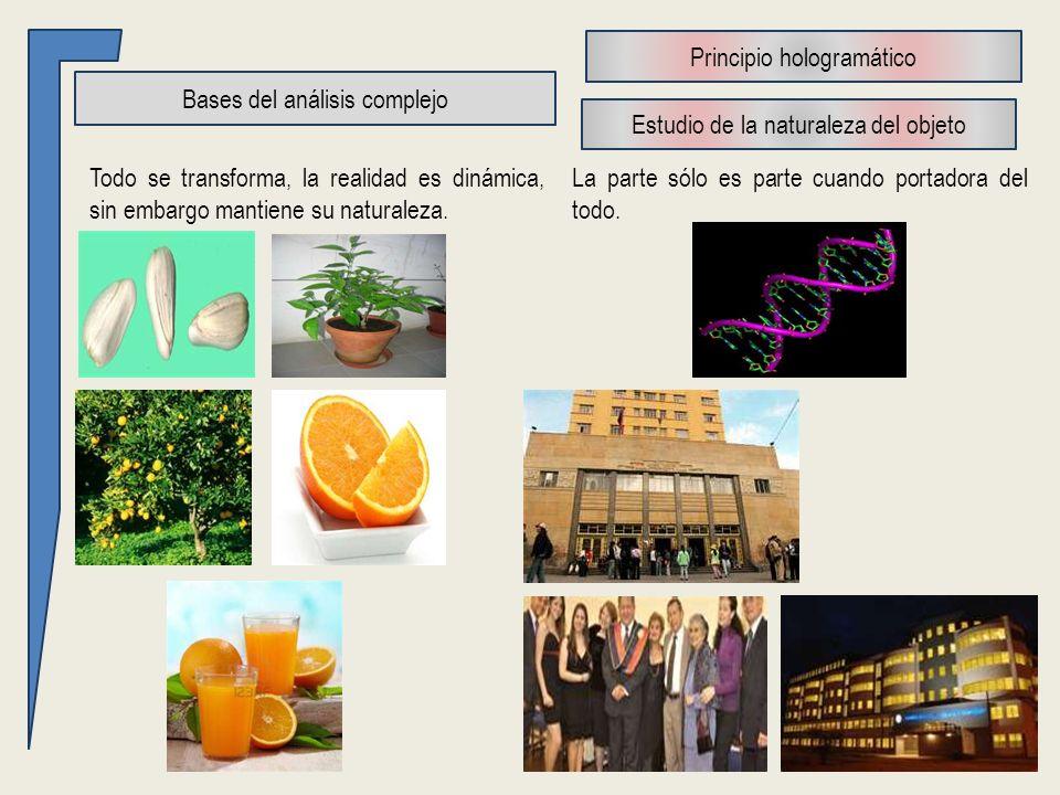 Bases del análisis complejo Todo se transforma, la realidad es dinámica, sin embargo mantiene su naturaleza.