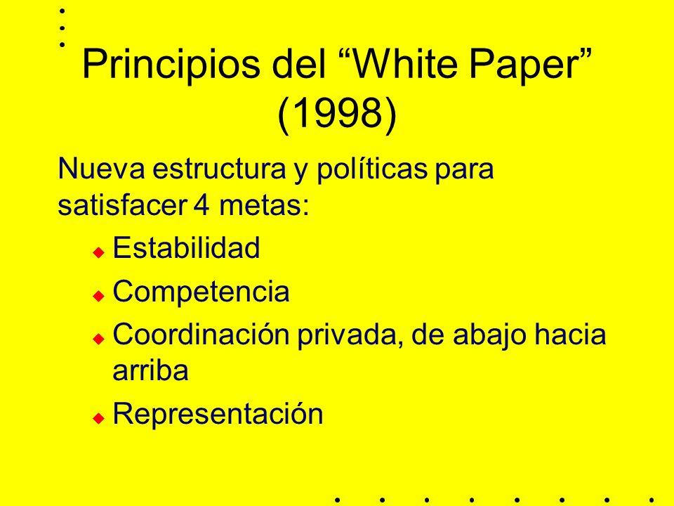 Principios del White Paper (1998) Nueva estructura y políticas para satisfacer 4 metas: Estabilidad Competencia Coordinación privada, de abajo hacia arriba Representación