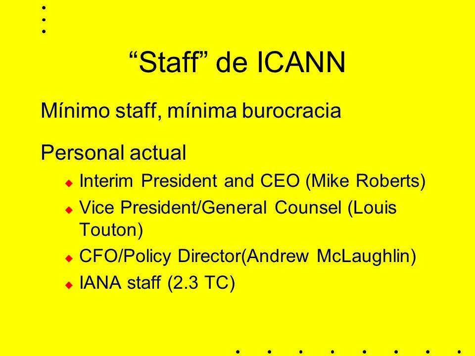 Staff de ICANN Mínimo staff, mínima burocracia Personal actual Interim President and CEO (Mike Roberts) Vice President/General Counsel (Louis Touton) CFO/Policy Director(Andrew McLaughlin) IANA staff (2.3 TC)
