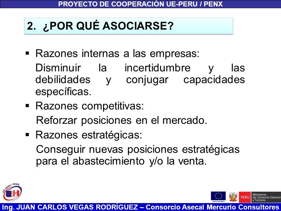 Ing. JUAN CARLOS VEGAS RODRÍGUEZ – Consorcio Asecal Mercurio Consultores Razones internas a las empresas: Disminuir la incertidumbre y las debilidades