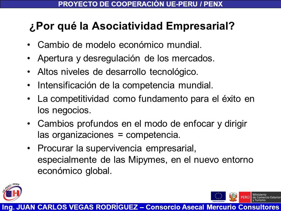 Ing. JUAN CARLOS VEGAS RODRÍGUEZ – Consorcio Asecal Mercurio Consultores ¿Por qué la Asociatividad Empresarial? Cambio de modelo económico mundial. Ap