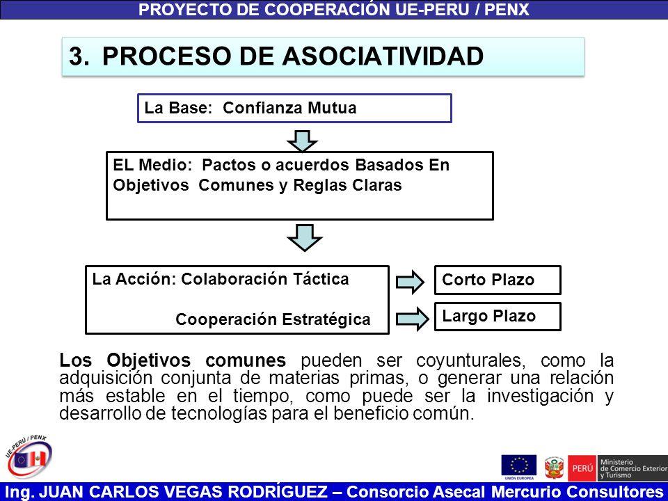 Ing. JUAN CARLOS VEGAS RODRÍGUEZ – Consorcio Asecal Mercurio Consultores 3.PROCESO DE ASOCIATIVIDAD Los Objetivos comunes pueden ser coyunturales, com