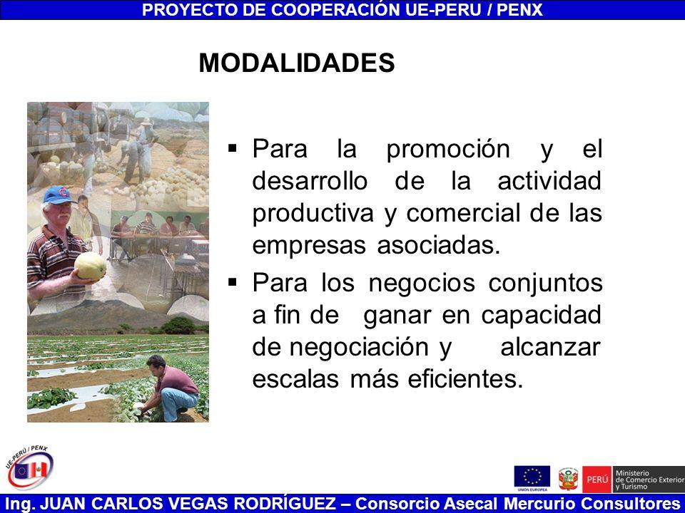 Ing. JUAN CARLOS VEGAS RODRÍGUEZ – Consorcio Asecal Mercurio Consultores MODALIDADES Para la promoción y el desarrollo de la actividad productiva y co