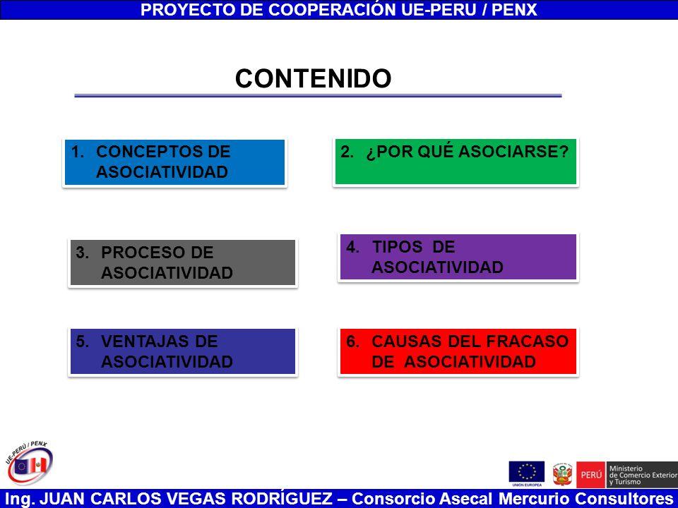 Ing.JUAN CARLOS VEGAS RODRÍGUEZ – Consorcio Asecal Mercurio Consultores Consorcios El Art.