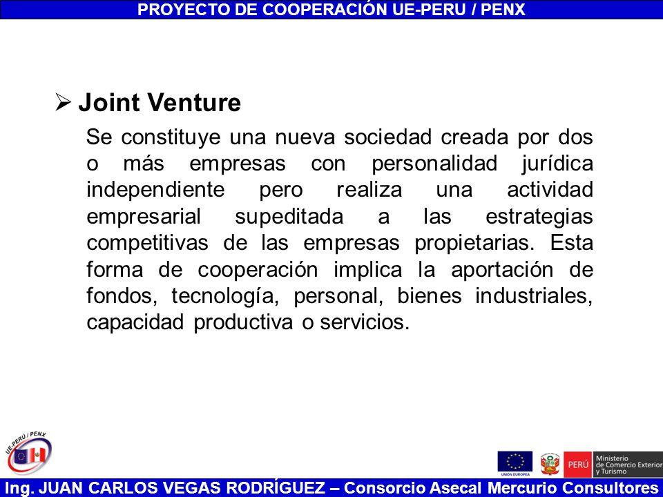 Ing. JUAN CARLOS VEGAS RODRÍGUEZ – Consorcio Asecal Mercurio Consultores Joint Venture Se constituye una nueva sociedad creada por dos o más empresas