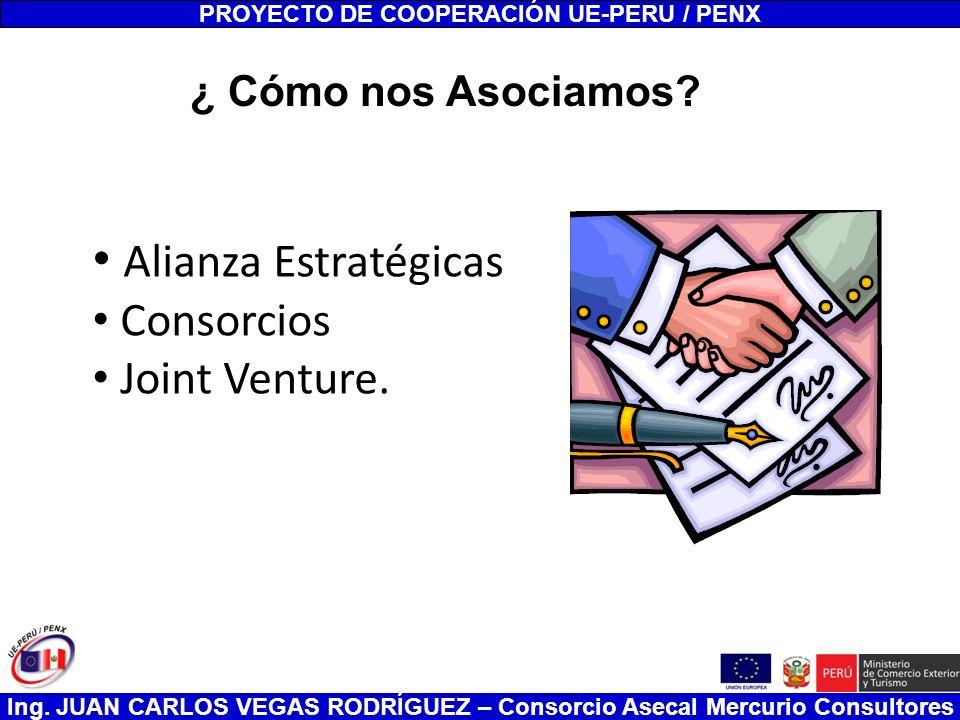 Ing. JUAN CARLOS VEGAS RODRÍGUEZ – Consorcio Asecal Mercurio Consultores Alianza Estratégicas Consorcios Joint Venture. PROYECTO DE COOPERACIÓN UE-PER