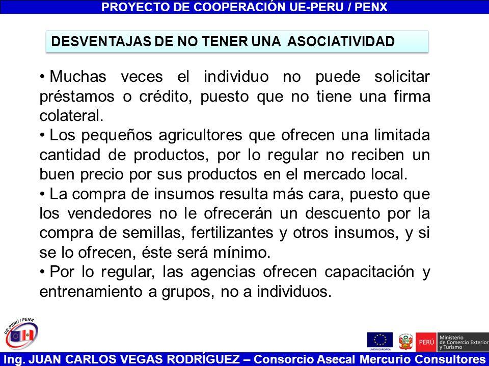 Ing. JUAN CARLOS VEGAS RODRÍGUEZ – Consorcio Asecal Mercurio Consultores DESVENTAJAS DE NO TENER UNA ASOCIATIVIDAD PROYECTO DE COOPERACIÓN UE-PERU / P