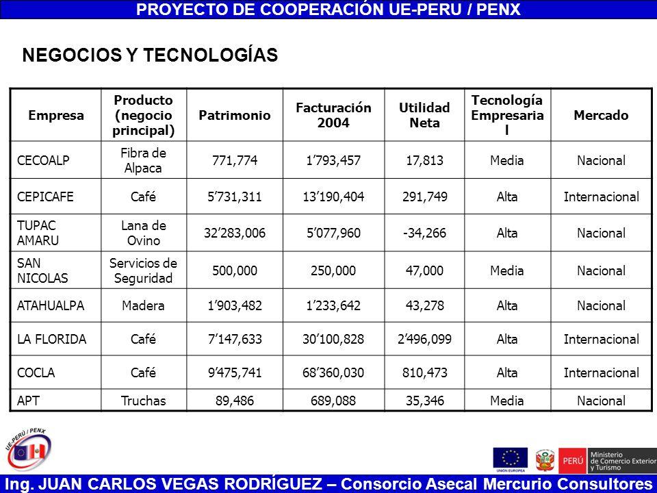 Ing. JUAN CARLOS VEGAS RODRÍGUEZ – Consorcio Asecal Mercurio Consultores PROYECTO DE COOPERACIÓN UE-PERU / PENX Empresa Producto (negocio principal) P