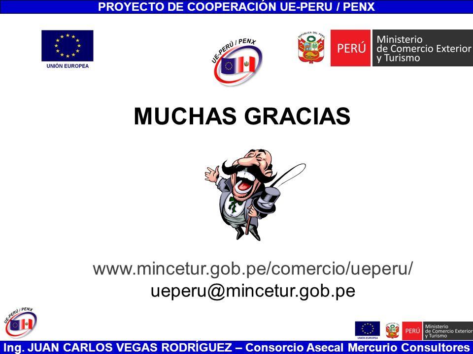Ing. JUAN CARLOS VEGAS RODRÍGUEZ – Consorcio Asecal Mercurio Consultores PROYECTO DE COOPERACIÓN UE-PERU / PENX MUCHAS GRACIAS www.mincetur.gob.pe/com