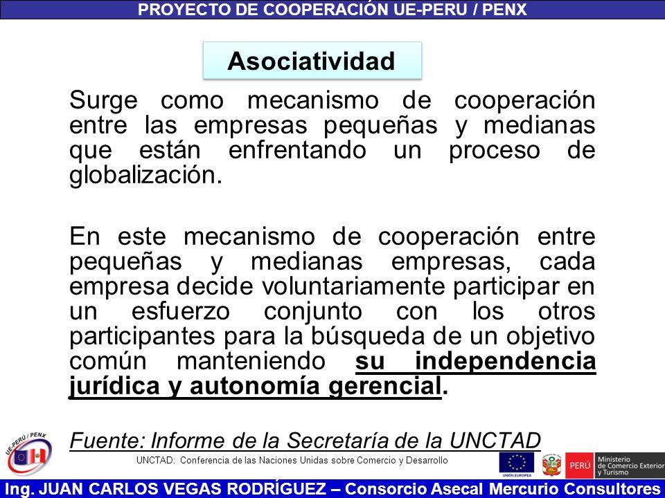 Ing. JUAN CARLOS VEGAS RODRÍGUEZ – Consorcio Asecal Mercurio Consultores Asociatividad Surge como mecanismo de cooperación entre las empresas pequeñas