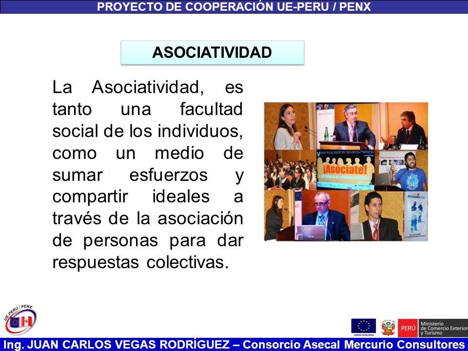 Ing. JUAN CARLOS VEGAS RODRÍGUEZ – Consorcio Asecal Mercurio Consultores PROYECTO DE COOPERACIÓN UE-PERU / PENX La Asociatividad, es tanto una faculta