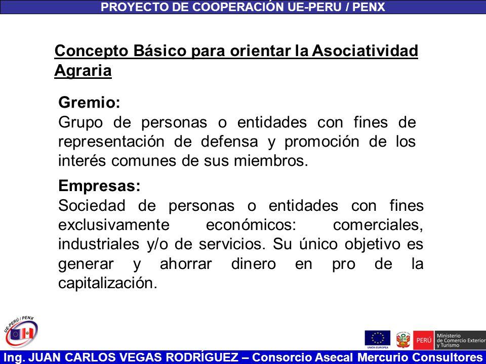 Ing. JUAN CARLOS VEGAS RODRÍGUEZ – Consorcio Asecal Mercurio Consultores PROYECTO DE COOPERACIÓN UE-PERU / PENX Concepto Básico para orientar la Asoci