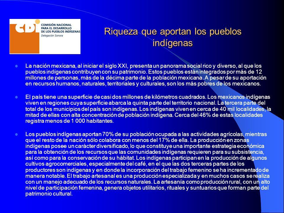 Riqueza que aportan los pueblos indígenas La nación mexicana, al iniciar el siglo XXI, presenta un panorama social rico y diverso, al que los pueblos indígenas contribuyen con su patrimonio.