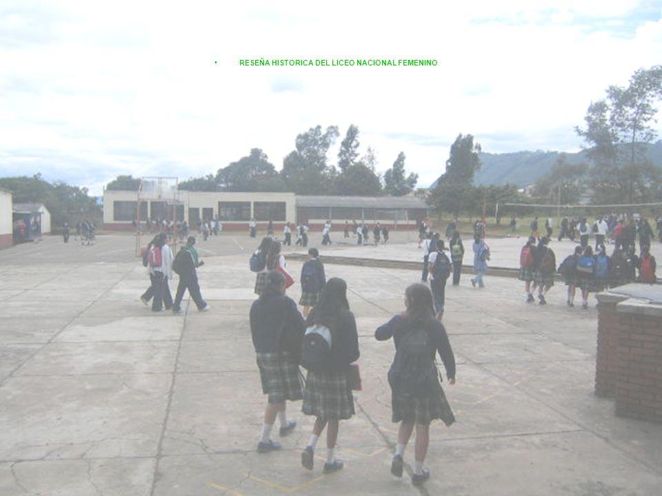 En el año 2004 Liceo Nacional Femenino dejo de ser el colegio femenino del municipio para convertirse en un colegio mixto. Esto causo gran incomodidad
