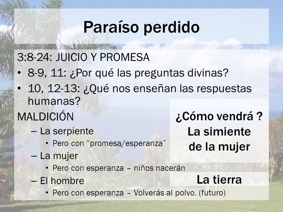 Paraíso perdido 3:8-24: JUICIO Y PROMESA 8-9, 11: ¿Por qué las preguntas divinas? 10, 12-13: ¿Qué nos enseñan las respuestas humanas? MALDICIÓN – La s