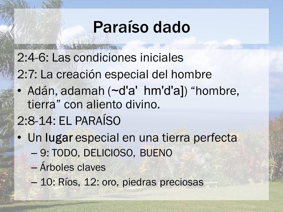 Paraíso dado 2:4-6: Las condiciones iniciales 2:7: La creación especial del hombre Adán, adamah ( ~d'a' hm'd'a] ) hombre, tierra con aliento divino. 2