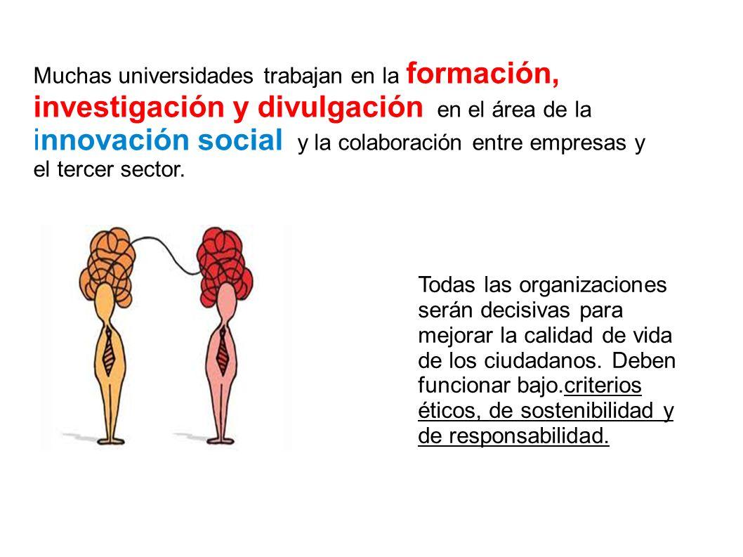 Muchas universidades trabajan en la formación, investigación y divulgación en el área de la innovación social y la colaboración entre empresas y el te