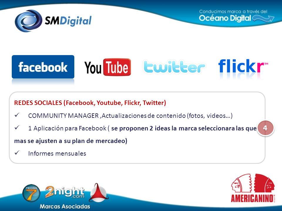 REDES SOCIALES (Facebook, Youtube, Flickr, Twitter) COMMUNITY MANAGER,Actualizaciones de contenido (fotos, videos…) 1 Aplicación para Facebook ( se pr