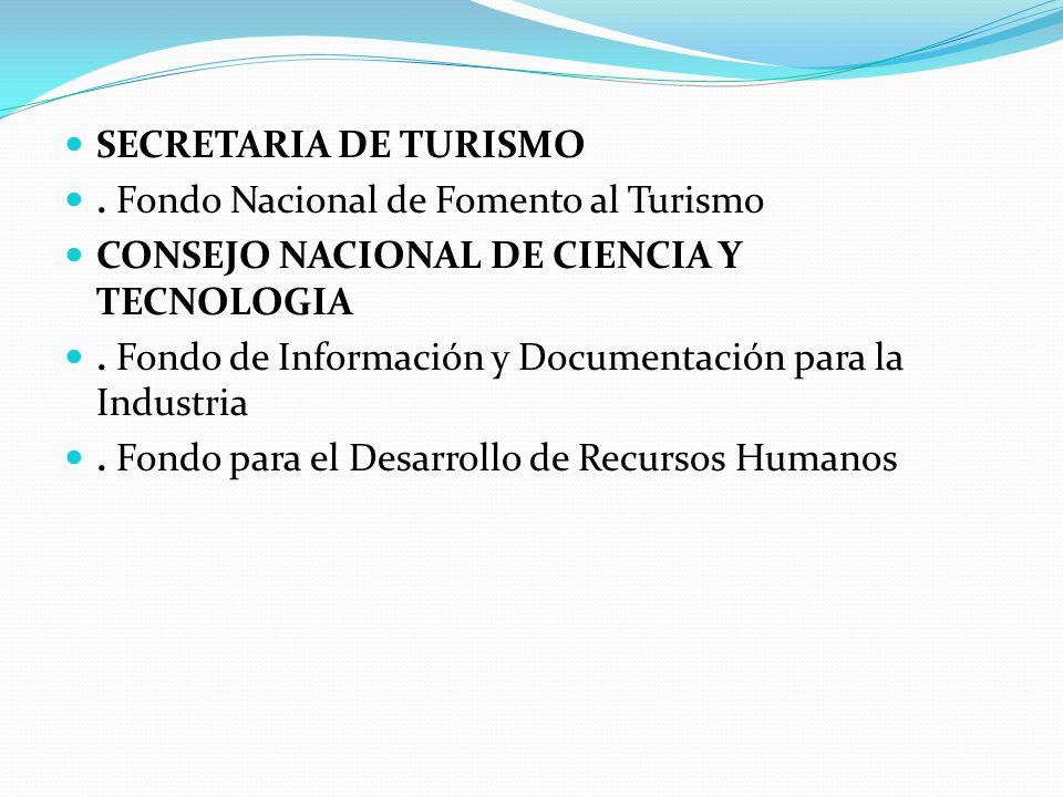 SECRETARIA DE TURISMO. Fondo Nacional de Fomento al Turismo CONSEJO NACIONAL DE CIENCIA Y TECNOLOGIA. Fondo de Información y Documentación para la Ind