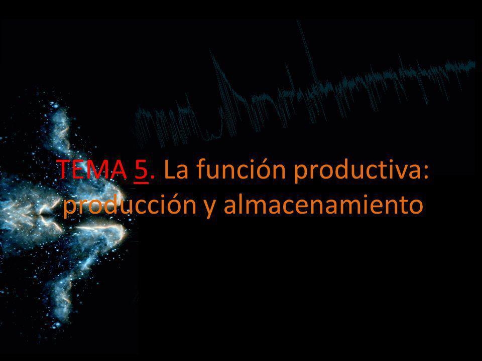 Procesos productivos Función de producción: Es la que transforma materias primas en productos con unos factores productivos gracias a la aplicación de una tecnología.