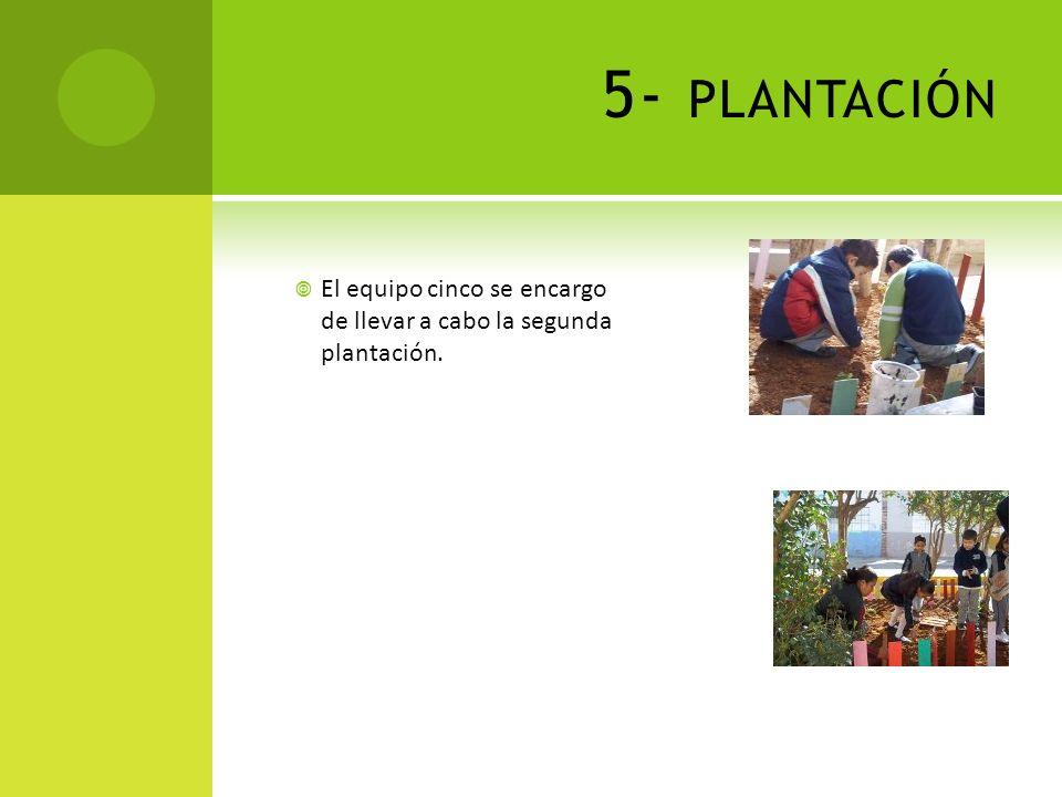 4- PRIMERA PLANTACIÓN El equipo tres inicia la primera plantación de semillas dentro del área.