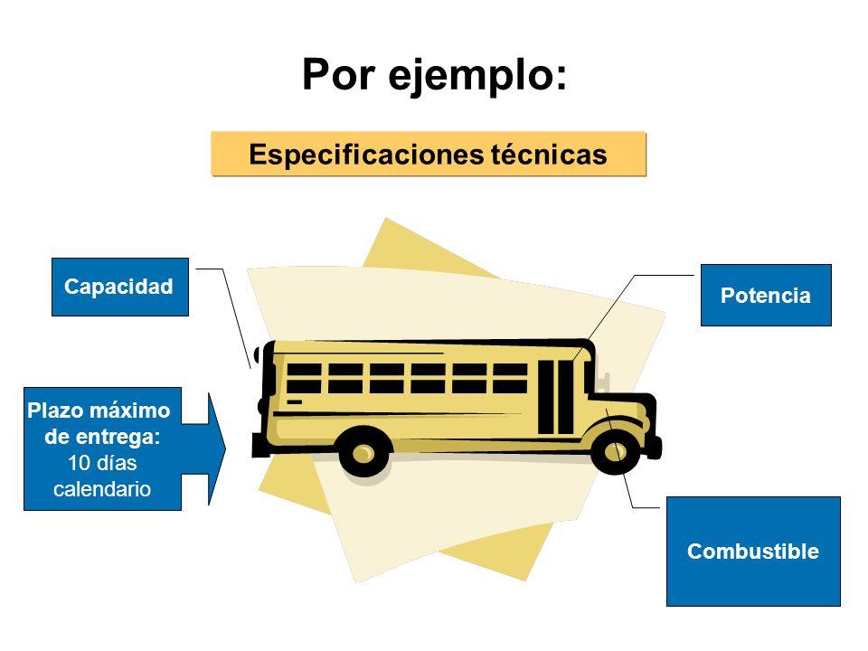 Por ejemplo: Potencia Combustible Capacidad Especificaciones técnicas Plazo máximo de entrega: 10 días calendario