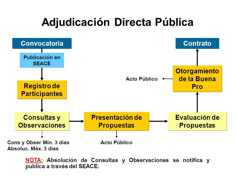 Adjudicación Directa Pública Convocatoria Registro de Participantes Consultas y Observaciones Presentación de Propuestas Evaluación de Propuestas Otorgamiento de la Buena Pro Contrato Publicación en SEACE Cons y Obser Mín.